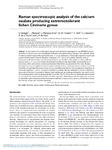 raman_spectroscopic_analysis_of_the_calcium_oxalate_producing_extremotolerant_lichen_circinaria_gyrosa.pdf.jpg